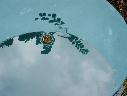 Dessin au doigt et à l'eau de pluie sur table, 27-07-2003