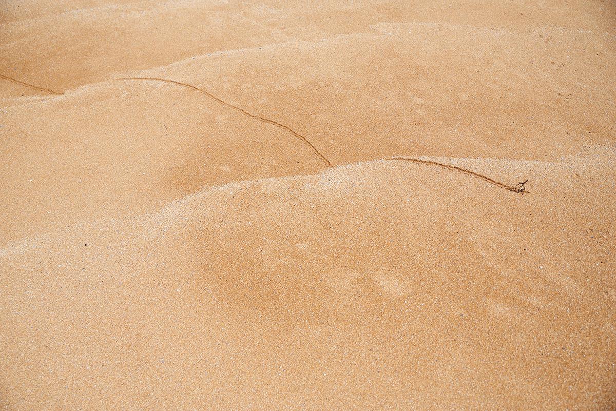empreintes de vagues02
